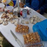 Curățarea ciupercilor/Foto: Radu Bărăian