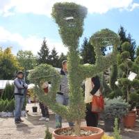 expo-flora-2013-15