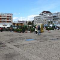 expo-flora-2013-3