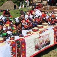 festival-regional-negresti-muzeul-tarii-oasului-2