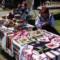 festival-regional-negresti-muzeul-tarii-oasului-3