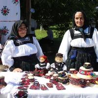 festival-regional-negresti-muzeul-tarii-oasului-4