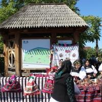 festival-regional-negresti-muzeul-tarii-oasului-8