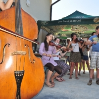 Instrumentiști din mai multe țări învață cântecul din zona Călata