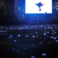 Pahare de plastic, sub clar de lună