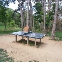 Masa de ping pong din parc/Foto:Radu Bărăian