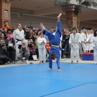 dem judo