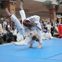demonstratie judo 2