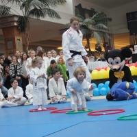 mini judoka bun