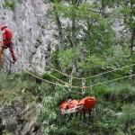Exercițiu de căutare  în Rezervația Naturală Cheile Turzii