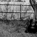 Festival în acorduri de chitară
