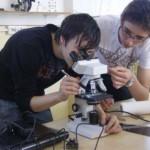 Începe etapa naţională a Olimpiadei Ştiinţe pentru Juniori