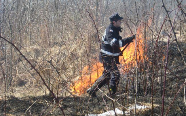 Incendiile au avut loc la altitudini de peste 1.500 de metri / Sursa foto: adevarul.ro