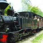 Trenulețul cu aburi poate deveni o atracție turistică