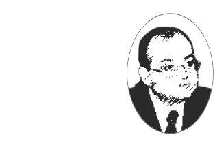 Valentin Naumescu, diplomat, profesor