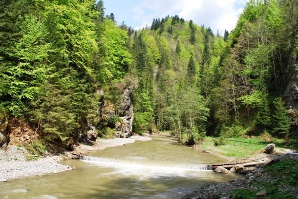 Valea Vaserului,   Maramureș / Sursa foto: buzznews.ro