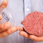 Hamburger-ul gătit în laborator (Hamburger-ul de laborator)