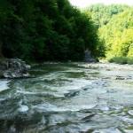 Râul Lăpuș / Sursa foto: eurotrips.ro