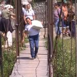 Localnicii traverseze râul Iza pe o punte improvizată