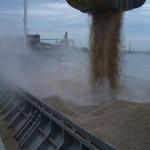 Greii de pe piaţa cerealelor s-ar fi înţeles la preţ. Sursa foto: bussines24.ro