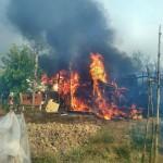 Cinci hectare de vegetație uscată incendiate la periferia municipiului Baia Mare
