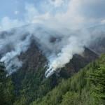 Incendiul a distrus peste 13 hectare de pădure şi pajişti alpine