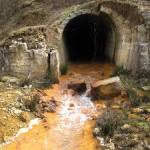 Senatorul Liviu Marian Pop susţine redeschiderea mineritului