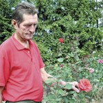 Gavril Mocean,   un iubitor al trandafirilor/ Foto: Alexandru Pop