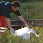 Medicii SMURD au constatat decesul tânărului / Sursa foto: click.ro