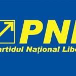 Marius Mânzat,   reales în funcția de președinte a PNL Dej