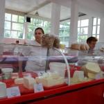 Hala de lactate din Piaţa Izvoarele este funcţională