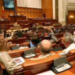 Jumătate dintre deputaţii maramureşeni au votat pentru eutanasierea maidanezilor