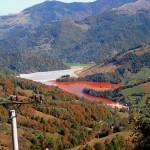 """""""Alburnus Maior"""" cere interzicerea prin lege a utilizării cianurilor în industria minieră"""
