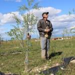 Careianul a plantat copăcei goji pe 2,  3 hectare
