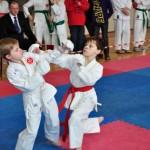 14 medalii au reuşit să câştige karateca de la CS Zanshin la Cupa României de Karate WKC