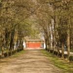"""Proiectul """"Parc Babeş"""",   într-o nouă dezbatere"""