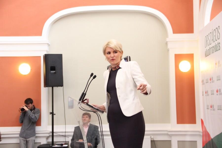 Andreea Paul Vass este vicepreședintele Organizației de Femei A Partidului Democrat Liberal