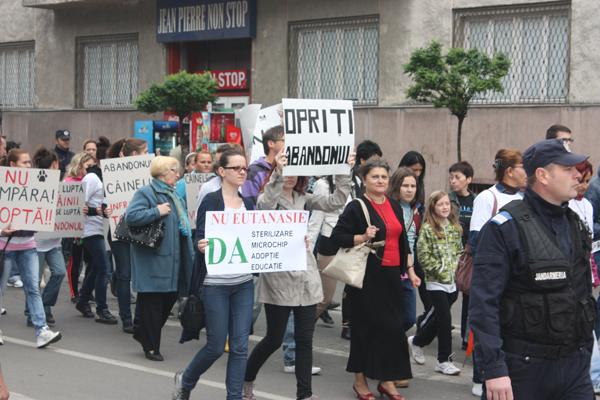 protest-eutanasiere-caini-comunitari-satu-mare (1)