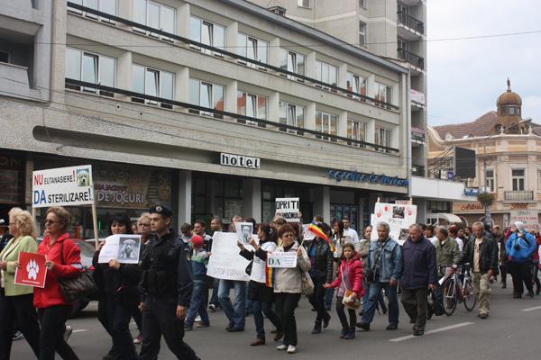 protest-eutanasiere-caini-comunitari-satu-mare (10)