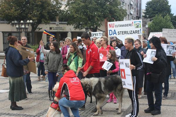protest-eutanasiere-caini-comunitari-satu-mare (14)