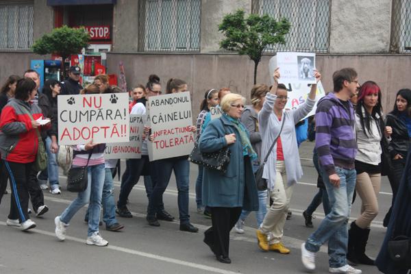 protest-eutanasiere-caini-comunitari-satu-mare (2)