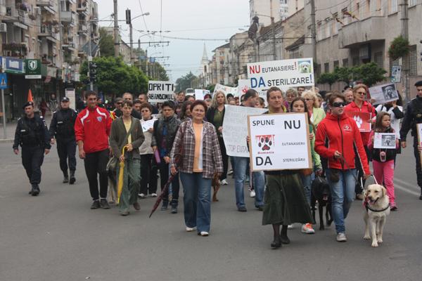 protest-eutanasiere-caini-comunitari-satu-mare (3)