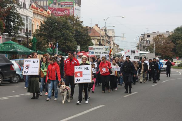 protest-eutanasiere-caini-comunitari-satu-mare (9)
