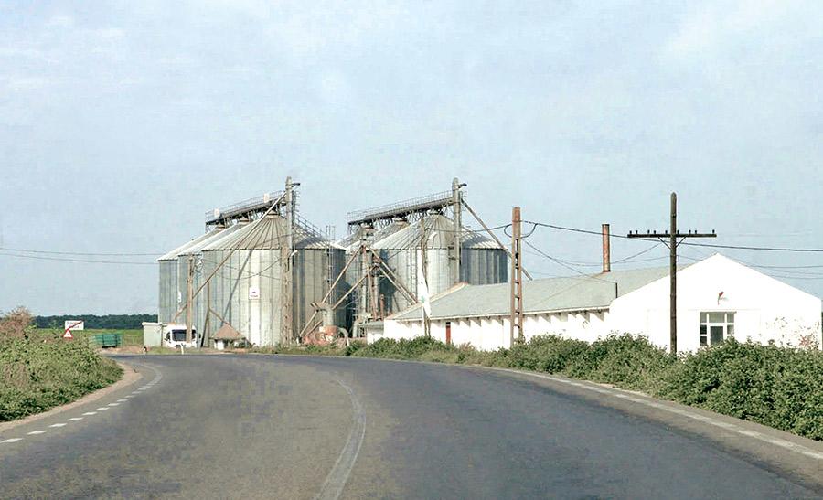 Cele mai întinse culturi de cereale din județul Satu Mare se află în zona Careiului