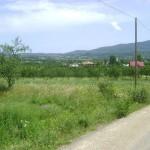 Câştigătorii concursului vor beneficia de un sejur  în tabăra ecologică aflată în curs de amenajare în comuna sătmăreană Tarna Mare / Sursa foto: panoramio.com
