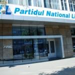 Primele alegeri în PNL Baia Mare