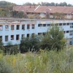 Boschetari își duc veacul nestingheriți în clădirea fostei fabrici Ergolemn