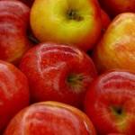 """Programul """"Fructe în școli"""" aprobat. Elevii vor primi mere"""