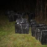 Tânărul transporta 11.000 pachete cu ţigări de contrabandă / Sursa foto: ijpfmm.ro