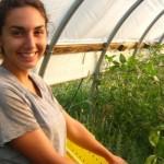Sprijinul financiar acordat tinerilor fermieri ar putea creşte în 2014 la 70.000 de euro / Sursa foto: gorjeanul.ro